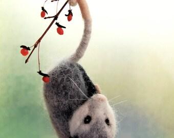 Needle Felted Opossum. Needle Felted Animals. Opossums. Needle Felted Animal. Possums. Needle Felt Opossum Ornament. Needle Felted Possum