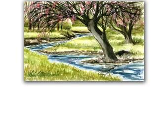 Cherry Tree Flower Stream Creek Watercolor Original Painting LLMartin Country Life Garden  Free Shipping USA