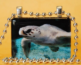 Glass Tile Photo Pendant - Sea Turtle of Atlanta SM101