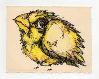 Bird Drawing #14