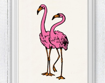 Pink Fllamingos - Marine animal life Poster Art - Marine  sea life illustration A4 print SAS019