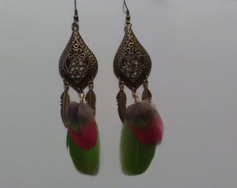 Natural Parrot feather earrings