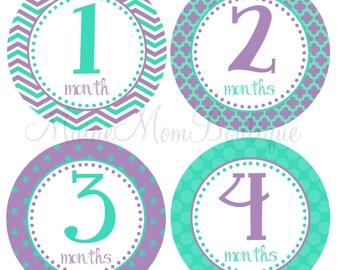 Baby Girl Monthly  Stickers, Baby Girl Month Stickers, Milestone Photo Prop  Stickers Aqua Purple Chevron Dots Shower