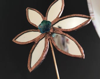 Mirror flower with aqua colour stamen.