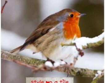 """Lovely Christmas Winter Robin Bird in the snow design large 20cm or 8"""" ceramic tile for kitchen bathroom living room walls splash backs"""