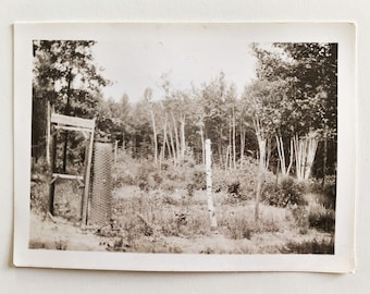 Original Vintage Photograph | Behind the Wire Fence