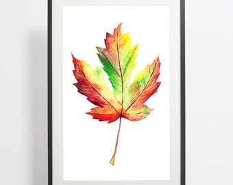 Watercolor Fall Maple Leaf Painting Print – maple leaf art, leaves watercolor, leaves illustration, maple leaf illustration, maple leaf