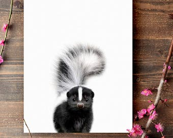 Woodland animals nursery, Baby skunk print, PRINTABLE art, Nursery decor, Animal art, Baby animal prints, Nursery wall art, Nursery art