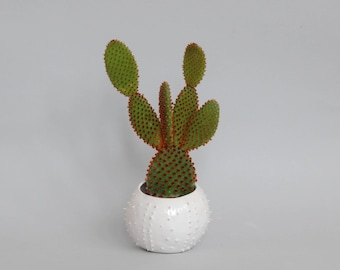 Small handmade ceramic succulent planter- white- flower pot- planter for flowers- air planter- planter cover