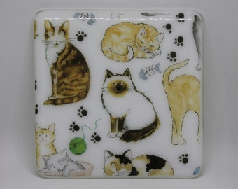 Cat coasters - set of 4 glass coasters