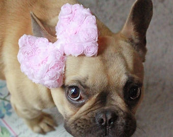 Baby Pink Puppy Bow - French Bulldog Accessories - Puppy Bow Headband