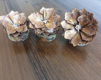 Cone flower eco decoration