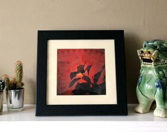 Red - Lomography Photo Art Print Poster