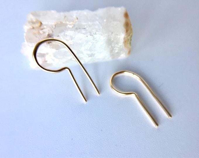 loop ear pins