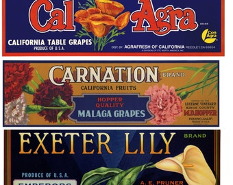 12 Vintage Grape crate labels with flowers - perfect for collection or scrapbook