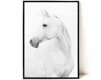Horse print, printable wall art poster, black and white horse photography, instant download horse printable art, modern horse art, large art