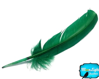 Turkey Quill Feathers, 6 Pieces - KELLY GREEN Turkey Rounds Secondary Wing Quill Feathers : 2240