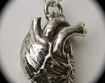 Anatomical Heart Necklace,in solid .925 Sterling Silver, on a sterling silver chain, Blue Bayer Design Made in NYC