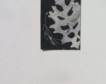 Small original hand printed botanical mini print ACEO Black grey Soft dusky blue Stef Mitchell  boho gift Miniature wall art FREE SHIPPING