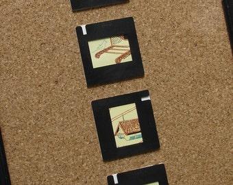 Framed Wall Art Collage Slides Bird Dwellings
