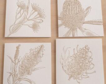 Letterpress all occasion cards - Australian native flora MULTI PACK 10x10cmm,  x4, Banksia, bottlebrush, grevillia, flowering gum