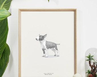 Bull Terrier Original Sketch Print