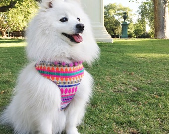 Arriba Mexican Pom Pom Dog Harness