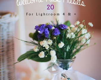 Welcome Pack 20 of my best selling Lightroom Presets!