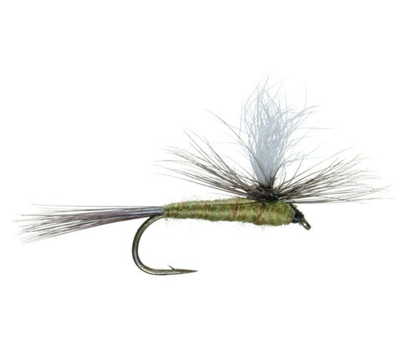 Parachute Blue Winged Olive - BWO - Classic Dry Fly - Hook Size 18 - Hand-Tied Fly Fishing Trout Flies