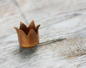 Hair bobby pin - You are my princess