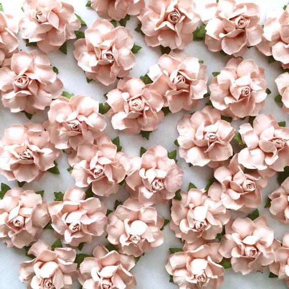 Blush pink flower garland backdrop wedding signs wedding mightylinksfo