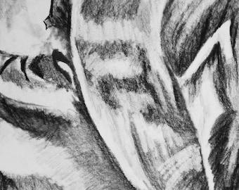 "Camouflage 6"" x 8"" Giclee Charcoal Art Print"