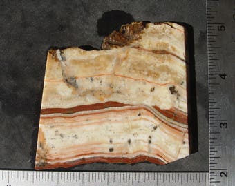 Red Pink and White Banded Onyx from Arizona    Lapidary Slab    T246
