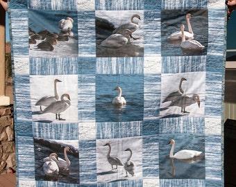 Swan quilt, trumpeter swan photograph, art quilt, photo quilt, wildlife quilt, Yellowstone river