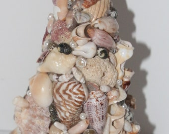 Sea Shell Tree