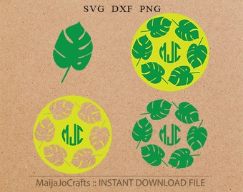 Jungle leaves monogram SVG Cricut monogram DXF, leave Clipart PNG instant download Silhouette monogram, Cricut designs, svg monogram