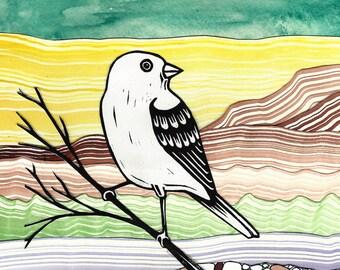 Semore the Bird Watercolor