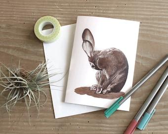 Rabbit Blank Card Set - Note Cards - Blank Cards - Bunny