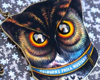 Color Owl Brooch