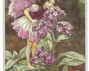 Heliotrope Fairy Cicely Mary Barker Flower Fairies Vintage Print 1995 Wall Art Nursery Decor Fairy Print Home Decor Print Fine Art