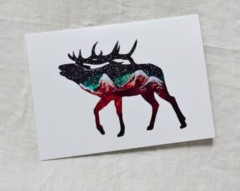 CARD - Mountain Elk