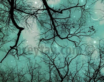 Nature Photography, Surreal Winter Sky, Teal, Black, Smiling Moon & Stars Print