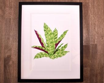Calathea Lancifolia, Rattlesnake Plant, Calathea, Indoor Plant, Foliage, Watercolor Print, Art Print, Watercolour Print