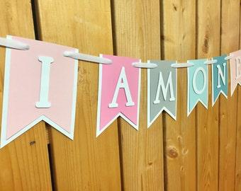custom pastel birthday banner, custom banner, birthday banner, party decorations, party banner, happy birthday, 1st birthday, birthday
