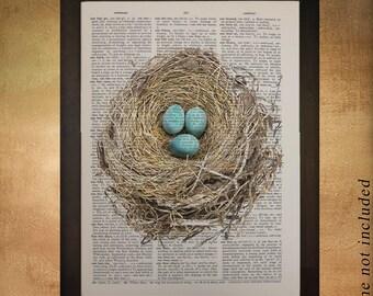 Robin's Nest Eggs Dictionary Art Print Bird Spring Wall Art Home Decor Animal Fine Art Print upcycled book da457