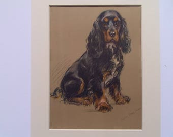 "Spaniel dog print by Lucy Dawson dated 1935 in 9""x9"" mount ready to frame"
