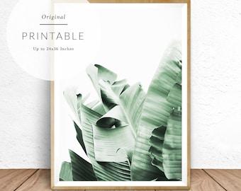 Banana Leaf Print, Tropical Wall Decor, Banana Leaves Wall Art, Tropical Print, Tropical Foliage, Tropical Plant, Tropical Jungle, Printable