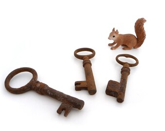Skeleton Key, Set of 3 Vintage Keys, Skeleton, Steampunk, Supplies, Old Keys
