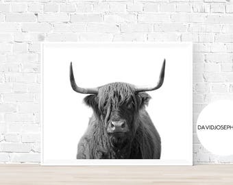 Highland Cow Print, Black and White, Highland Bull Print, Printable Decor, Farm Wall Art, Cattle Photography, Digital Download