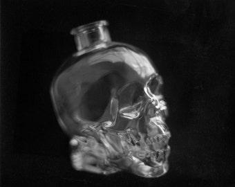 Skull Vodka Decanter - 8x10 silver gelatin print